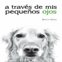 Entrevista a Emilio Ortiz, escritor