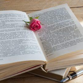 Tener un estudio en el jardín como biblioteca o rincón de lectura